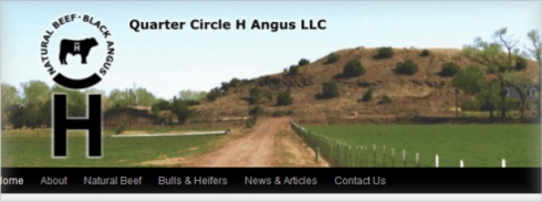 Quarter Circle H Angus